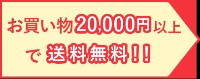 お買い物20,000円以上で送料無料!!